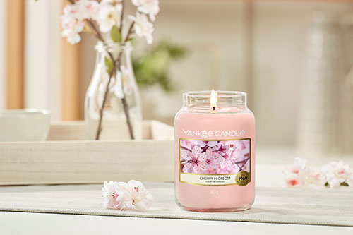 Bougie Fleur de Cerisier Yankee Candle Hémisphère Sud